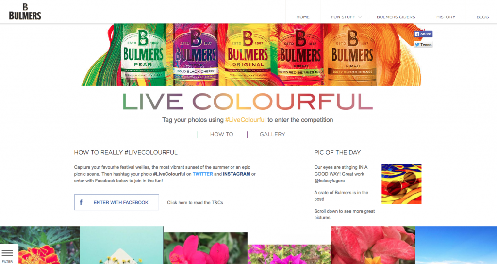 Bulmers live colorful